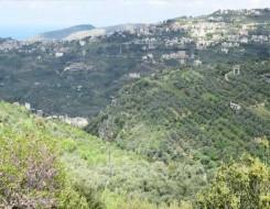 """لبنان اليوم - """"اليونيسيف"""" تحذر من أزمة مياه في لبنان قد تطال 4 ملايين شخص"""