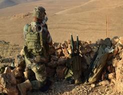 لبنان اليوم - الجيش اللبناني يضبط عشرة أطنان من الحشيش اليوم الإثنين