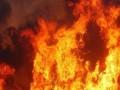 لبنان اليوم - حريق في قاعة افتتاح مهرجان الجونة قبل انطلاقه بـ 24 ساعة ومؤسسه نجيب ساويرس يُعلق