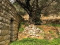 لبنان اليوم - 5 مسارات جديدة للمشي في لبنان مناسِبة لاستقبال فصل الخريف